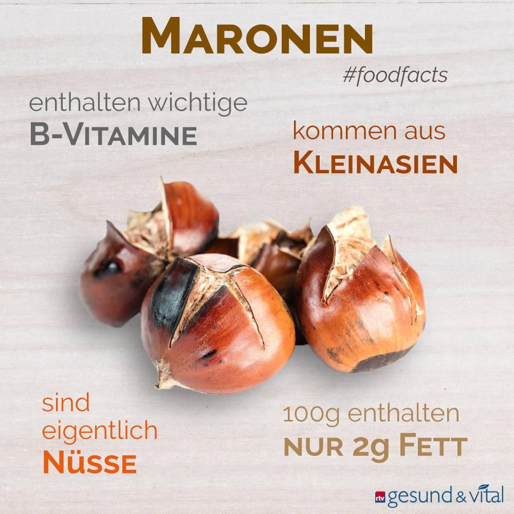 Eine Infografik mit verschiedenen Fakten zu Maronen Sie zeigt Wissenswertes über die Inhaltsstoffe und Herkunft der Esskastanien.