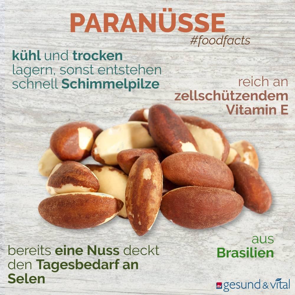 Eine Infografik mit verschiedenen Fakten zu Paranüssen. Sie zeigt Wissenswertes über die Inhaltsstoffe, Herkunft und Lagerung der Nüsse.