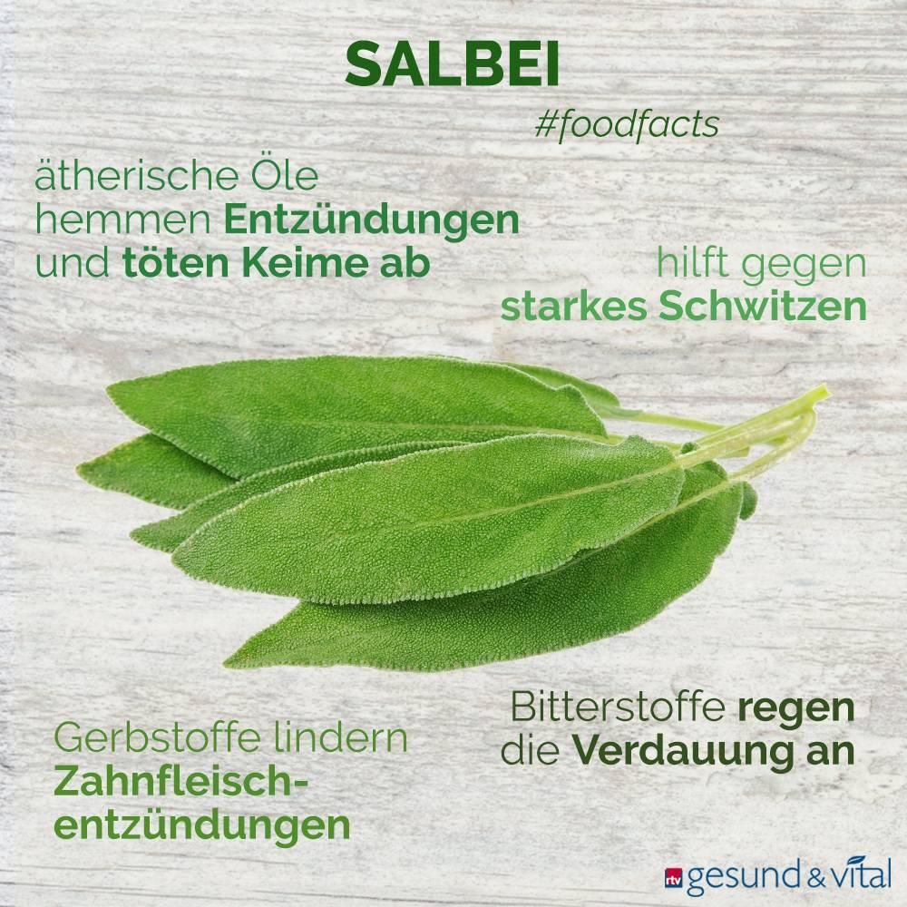 Eine Infografik mit verschiedenen Fakten zu Salbei. Sie zeigt Wissenswertes über die Inhaltsstoffe und Wirkung der Heilpflanze.