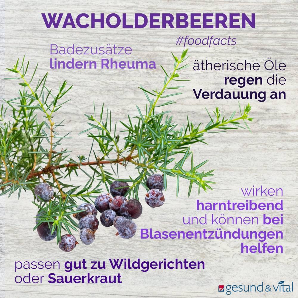 Eine Infografik mit verschiedenen Fakten zu Wacholderbeeren. Sie zeigt Wissenswertes über die Wirkung der Beeren.