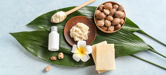 Nüsse des Karitebaums, daraus gewonnene Sheabutter und Kosmetikprodukte mit Sheabutter
