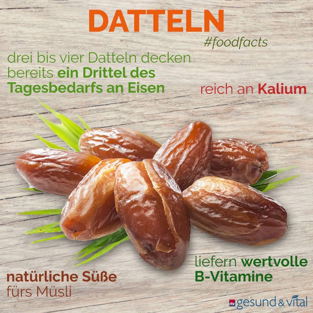 Eine Infografik mit verschiedenen Fakten zu Datteln. Sie zeigt Wissenswertes über die Inhaltsstoffe der Palmenfrüchte.