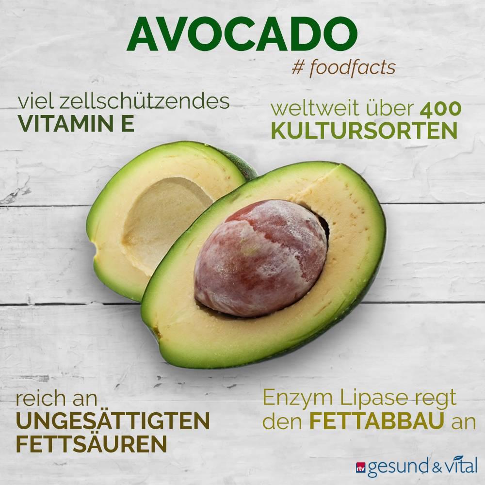 Eine Grafik mit verschiedenen Fakten zur Avocado. Sie zeigt u.a. Wissenswertes über die Inhaltsstoffe und Wirkung der Avocado.