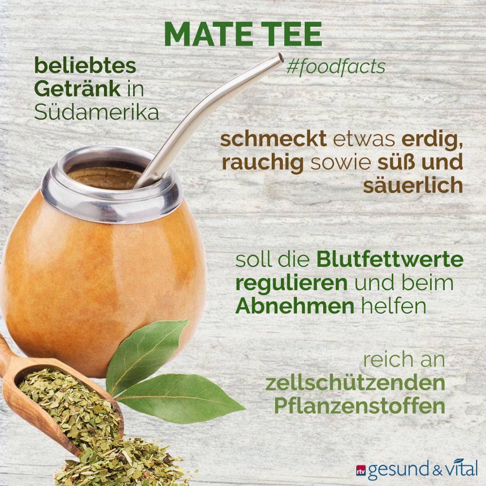 Eine Infografik mit verschiedenen Fakten zu Mate-Tee. Sie zeigt u.a. Wissenswertes über die Inhaltsstoffe und Wirkung des südamerikanischen Tees.