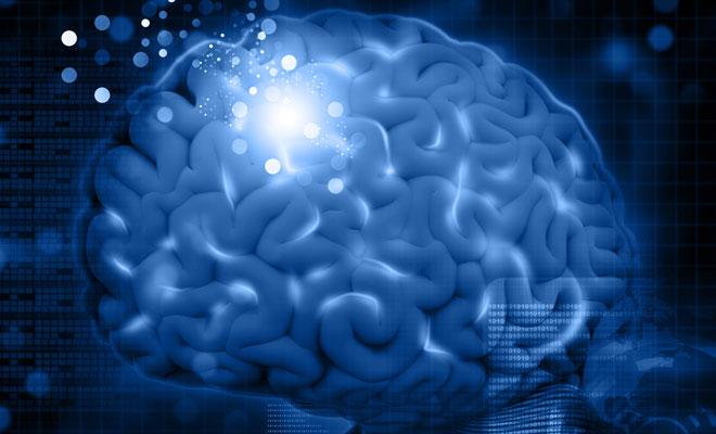 Eine Grafik von einem Gehirn