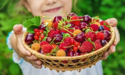 Ein Kind mit Vitamin-C-haltigen Beeren