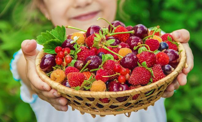welches obst hat am meisten vitamin c