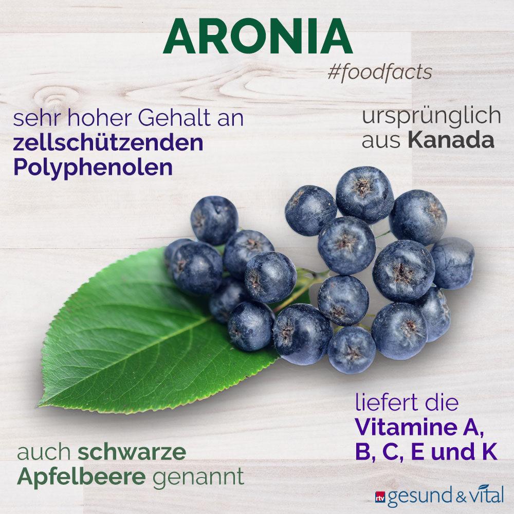 Eine Infografik mit verschiedenen Fakten zu Aronia. Sie zeigt u.a. Wissenswertes über die Inhaltsstoffe der kanadischen Beere.