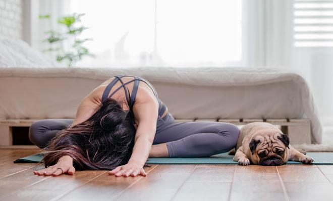 Eine Frau macht Yoga in ihrem Wohnzimmer, mit auf ihrer Yogamatte liegt ihr Hund