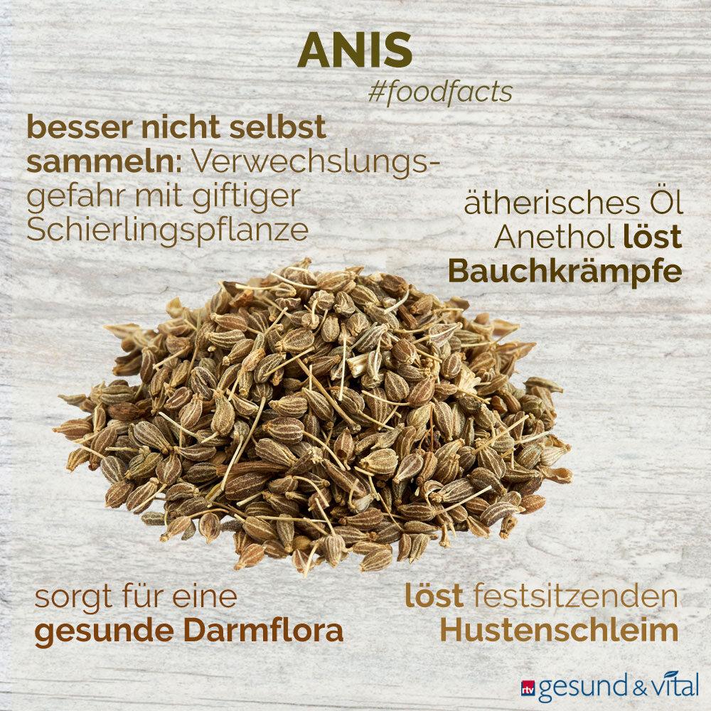 Eine Infografik mit verschiedenen Fakten zu Anis. Sie zeigt u.a. Wissenswertes über die Wirkung des Gewürzes.