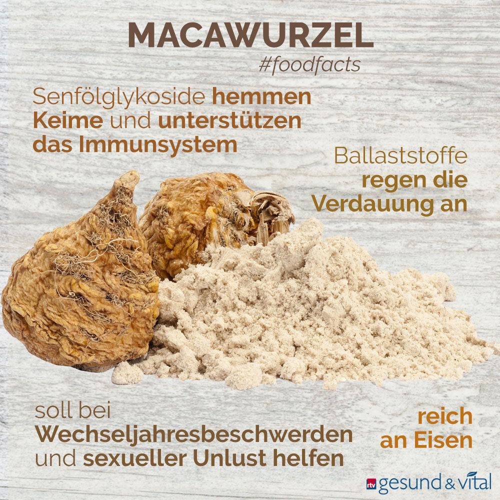 Eine Infografik mit verschiedenen Fakten zu Maca. Sie zeigt u.a. Wissenswertes über die Inhaltsstoffe und Wirkung der Macawurzel.