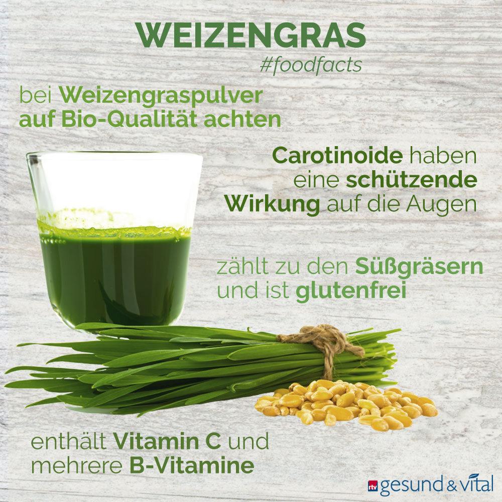 Eine Infografik mit verschiedenen Fakten zu Weizengras. Sie zeigt u.a. Wissenswertes über die Inhaltsstoffe und Wirkung von Weizengras.