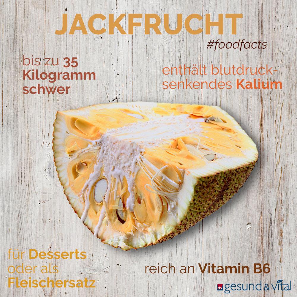 Eine Infografik mit verschiedenen Fakten zur Jackfrucht. Sie zeigt u.a. Wissenswertes über die Inhaltsstoffe und Zubereitung der exotischen Frucht.