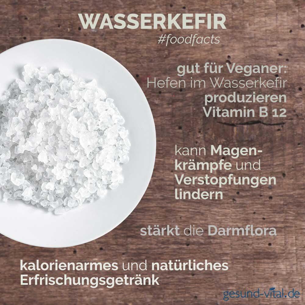 Eine Infografik mit verschiedenen Fakten zu Wasserkefir. Sie zeigt u.a. Wissenswertes über die Inhaltsstoffe und Wirkung von Wasserkefir.