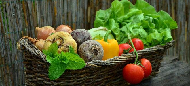 Ein Korb mit Roter Bete, Paprika, Salat, Tomaten, Zwiebeln, Minze und Knollensellerie