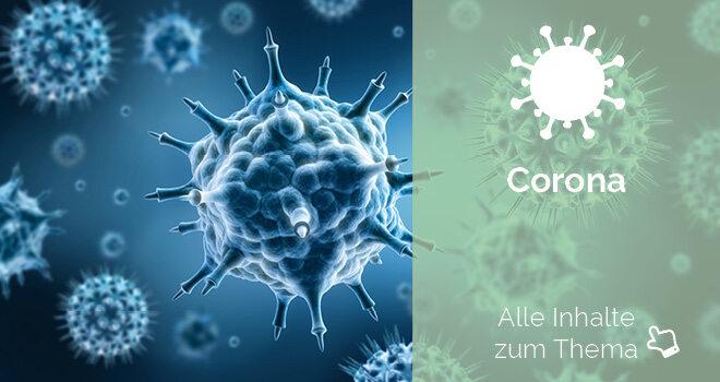 Grafische Darstellung von Viren