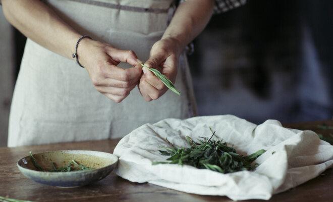 Eine Person zupft frischen Estragon und legt die Blätter in eine kleine Schale auf einem Tisch